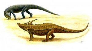 dinosauri (4)
